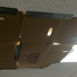 coveringlightcardboard_568e845e3cb68